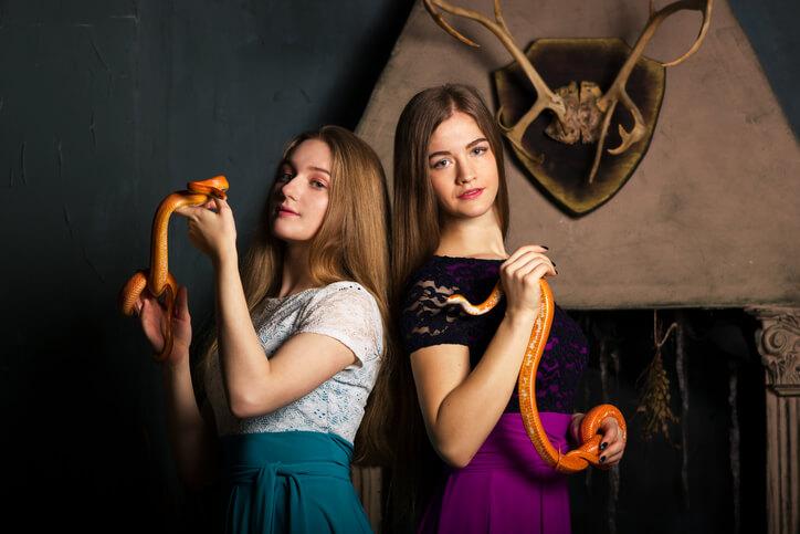 夢占い 蛇 二匹
