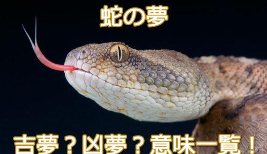 【夢占い】蛇の夢の意味は?食べる・脱皮・襲われる・・・状況別夢の意味45!