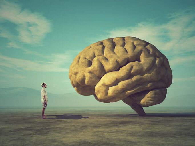 占いにハマる人 IQ 考える 脳 脳波