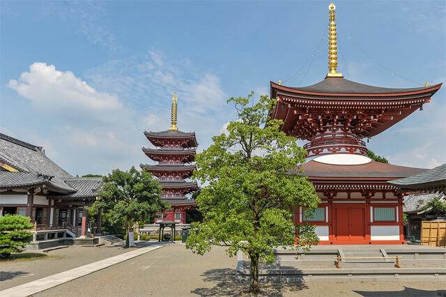 熊本パワースポット 蓮華院誕生寺