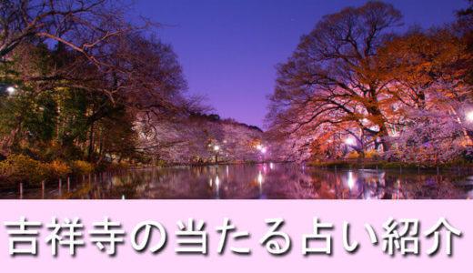 吉祥寺の占い館、当たる場所はココ!おすすめ占い館10選!