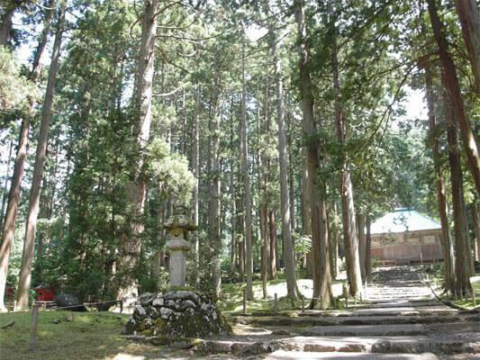 平泉寺白山神社 福井 パワースポット