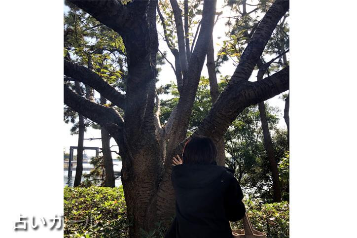 癒しフェア 東京ビックサイト 検証 霊感 体験 パワー