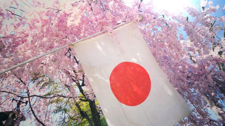 日本 占い 歴史